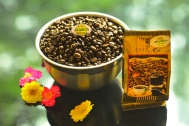 Coffee beans roasted special ARABICA